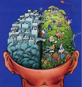 brain left right