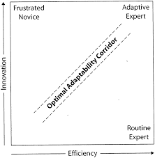 Daniel L. Schwartz, John D. Bransford and David Sears: Optimal Adaptability Corridor (Efficiency and Innovation in Transfer, p. 55)